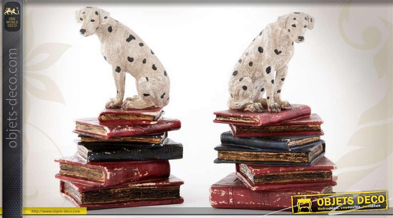 serre livres d coratifs chiens dalmatiens et livres anciens. Black Bedroom Furniture Sets. Home Design Ideas