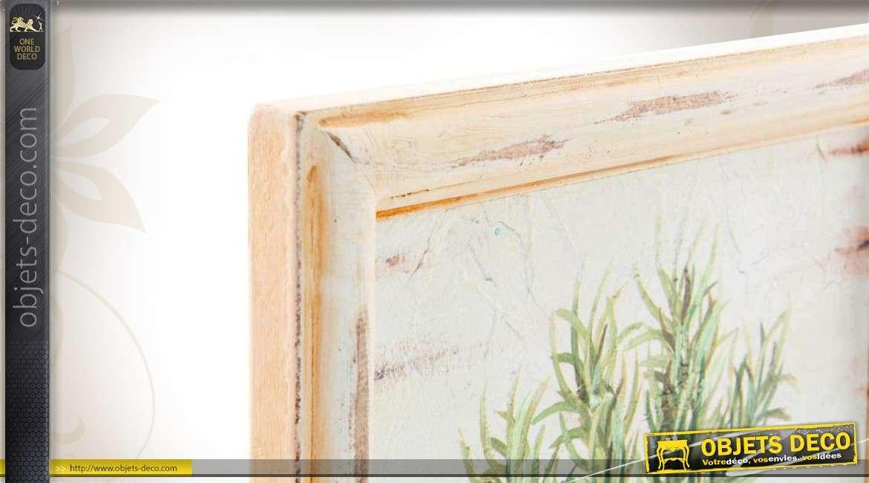 s rie de 4 tableaux encadrement bois th me plantes aromatiques. Black Bedroom Furniture Sets. Home Design Ideas