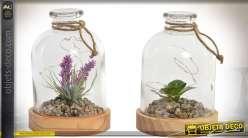 Duo de petites lampes de table LED plantes sous cloches 18 cm