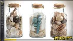 Objets déco : série de 3 bocaux de coquillages pour déco style bord de mer