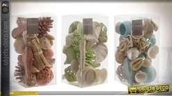 Set de 3 packs déco bord de mer avec coquillages et divers objets
