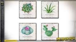 Série de 4 tableaux décoratifs sur le thème de cactus