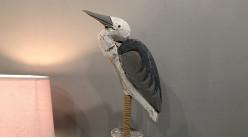 Représentation d'un pélican sur son perchoir, en bois finitions usées esprit bord de mer, touches de corde, 65cm