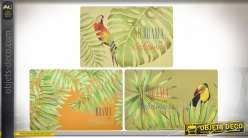 SET DE TABLE PP 43,5X28 TROPICAL 3 MOD.