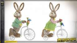 FIGURE FIBRE 12X26X36 BICYCLE LAPIN 2 MOD.