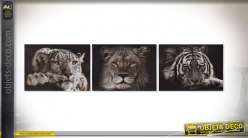 TABLEAU TOILE PIN 70X1,8X50 ANIMAL 3 MOD.