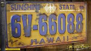 Plaque minéralogique rétro Hawaii en métal embossé