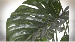PLANTE PVC 100X100X120 MONTSERA VERT