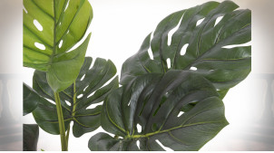 PLANTE PVC 65X65X60 MONTSERA VERT