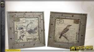 Série de 2 tableaux décoratifs vintage motifs oiseaux 46 x 46 cm