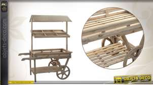 Chariot présentoir en bois style rétro