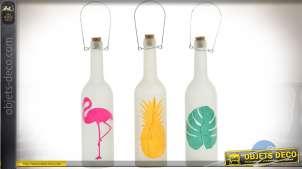 Série de 3 bouteilles avec éclairage LED illustration de style exotique 29 cm