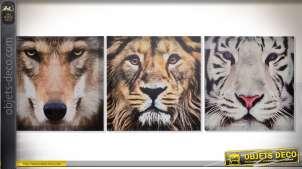 Série de trois toiles sur châssis bois : loup, lion et tigre blanc 40 x 40 cm