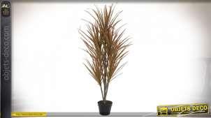 PLANTE PVC 72X55X133 DRACAENA