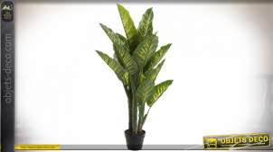 PLANTE PVC 75X72X120 DIEFFENBACHIA VERT
