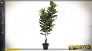 PLANTE PVC 56X56X126 RUBBER PLANTE VERT
