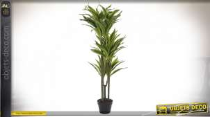 PLANTE PVC 57X59X124 DRACAENA