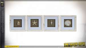 TABLEAU MDF VERRE 25X4X25 COQUILLAGES 4 MOD.