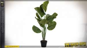 PLANTE PVC PP 50X60X102 VERT