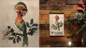 Oiseau du Paradis sur toile imprimée, ambiance ancienne encyclopédie, décoration murale, 50cm
