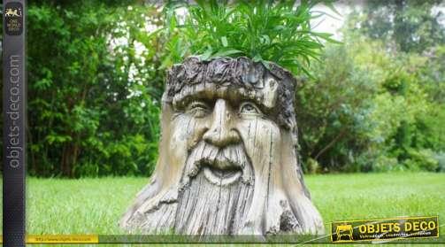 Tronc d'abre andromorphique décoratif faisant office de jardinière esprit contes et histoires fantastiques