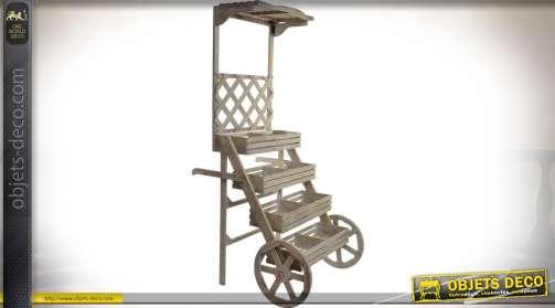 Pésentoir / jardinières / chariot en bois de style rétro avec 4 niveaux d'exposition